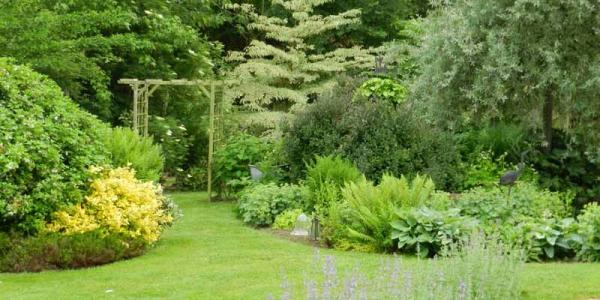 image-de-jardin-3.jpg
